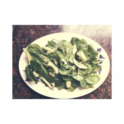 Spinach Avocado salad 😋🌿