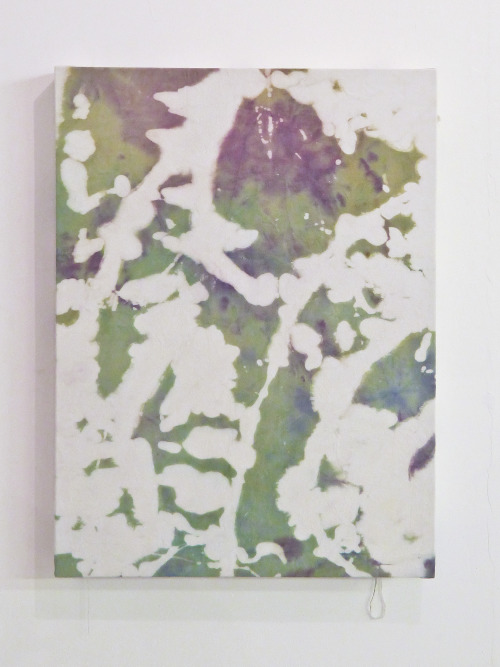 'Splittertarnmuster', Bleach and Dye on Canvas.  81 x 61 cm. 2012