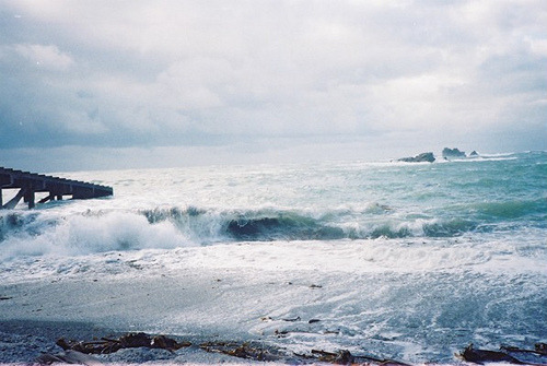 silent-cities:  Lizard Waves by b4be on Flickr.