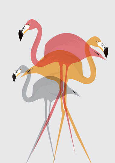 Apartment Therapy Main - For the Love of Flamingos