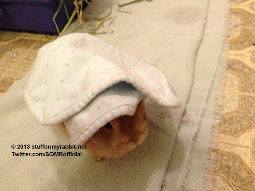 stuffonmyrabbit:  Burp cloth