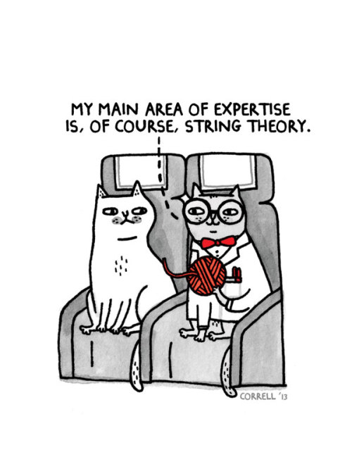 wired:  gemmacorrell:  Sky Cats (my monthly cartoon for Emirates Airlines Open Skies In-Flight magazine)  OMG so good.