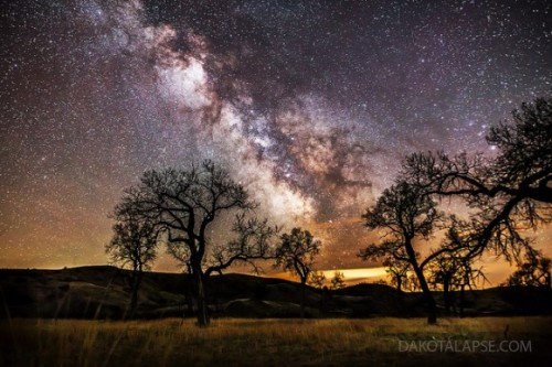 space-pics:  Lovely Astrophoto: Cottonwoods and the Milky Way http://space-pics.tumblr.com/