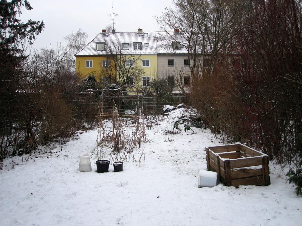 berlinfarmlab:  The garden in winter. Everything is frozen.
