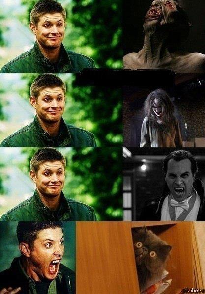 teamfreewillspn:  … I just can't…