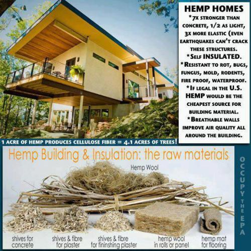 veganmovement2012:  Hemp homes