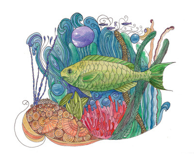 Parrotfish Paradise Art Print by Catherine Holcombe | Society6 on We Heart It - http://weheartit.com/entry/57419254/via/aftermyart