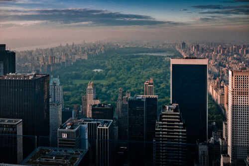 xoldnewsx:  Central Park by diegochiara2007