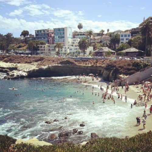 #tbt to my favorite place in the world #lajolla #lajollacove #sandiego #socal #california #cali #beach #ocean #snorkeling #summer #august #2012 #2013 #igdaily #kik #twitter