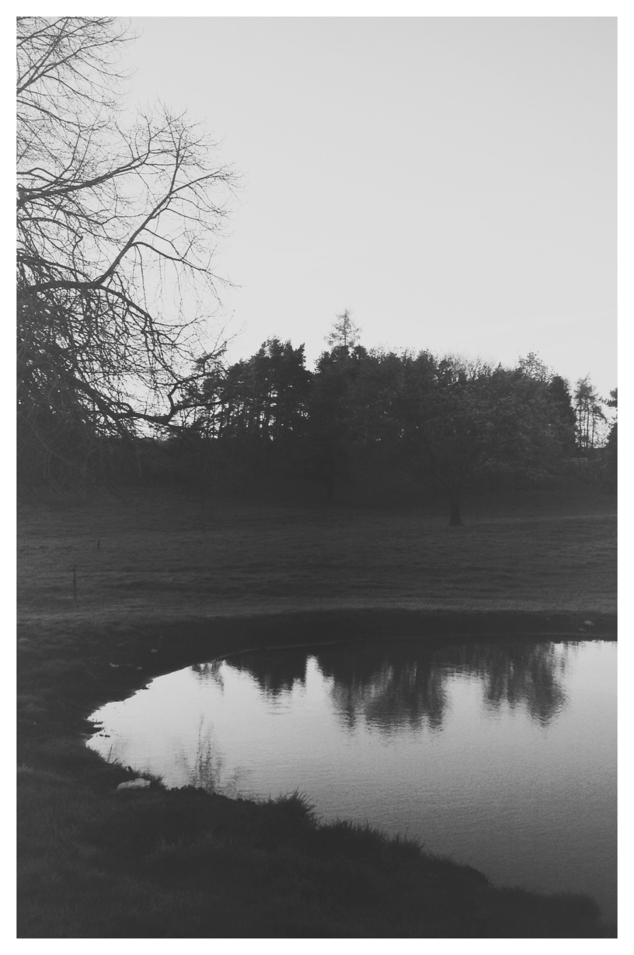 south-england:  Pond Reflections »» Thomas Hanks