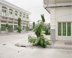 Ambiguous urban development in Phnom Penh by Mathieu Bernard-Reymond. (via Mathieu Bernard-Reymond)