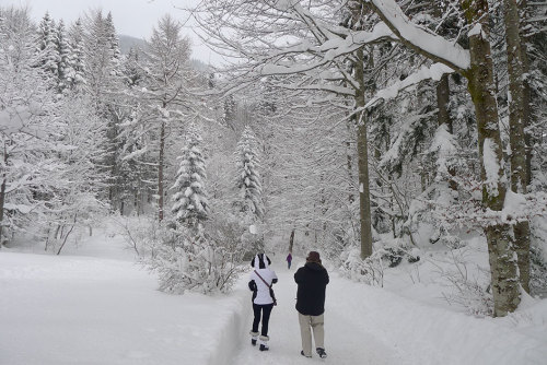 Walking to Linderhof Palace in December 2012. Definitely worth seeing in the snow, but I need to see it again in spring/summer too, because the sculptures were covered up.