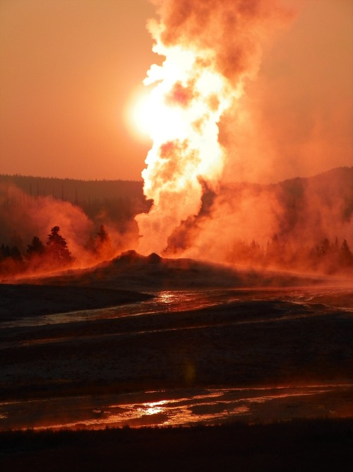 One of the most stunning photos we have ever seen of Old Faithful at #sunrise in Yellowstone National Park.  Photo: Tracy Ferguson