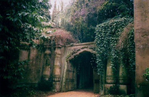 Highgate Cemetery is perhaps Britain's best example of a Victorian Valhalla. Opened in 1839, the cemetery was used in the late 60's and early 70's for witchcraft practices and séances. In the 1970s became the location for the Hammer Horror films.