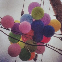 Jesus, Balloons . (at College Park)