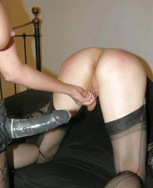 cryan0565:  femdomhotwifecuckoldinterracial:  Fucking is different in a FemDom relationship.  Our only fucking is Her fucking me. We haven't had penetrative sex any other way for four years now. For us this is normal sex. We love it and She is in charge.
