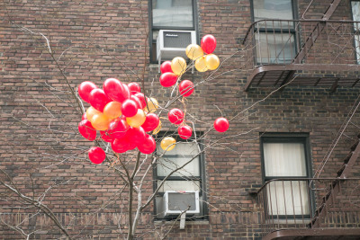 terrysdiary:  Balloons in a tree.  I don't browse tumblr all that much, but when I do, I always find myself on Terry Richardson's page. It's funny, his style is deceptively simple, but the more I look at it, it's easy to see what vision he has.