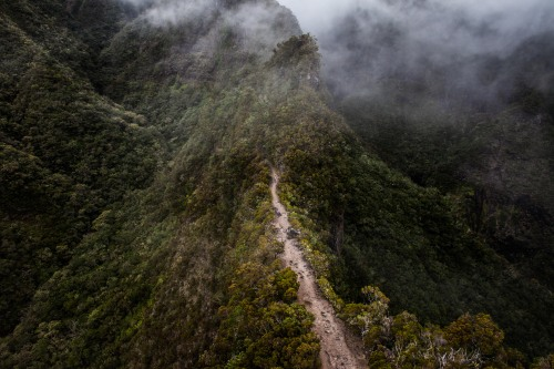 A runner enters the land before time during the Diagonale des Fous race on the island of Réunion.Photo: Alexis Berg as captured in shooting his book, Grand Trail.