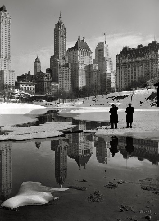 """New York City views. Plaza buildings from Central Park."" February 12, 1933. (via Shorpy Historical Photo Archive)"