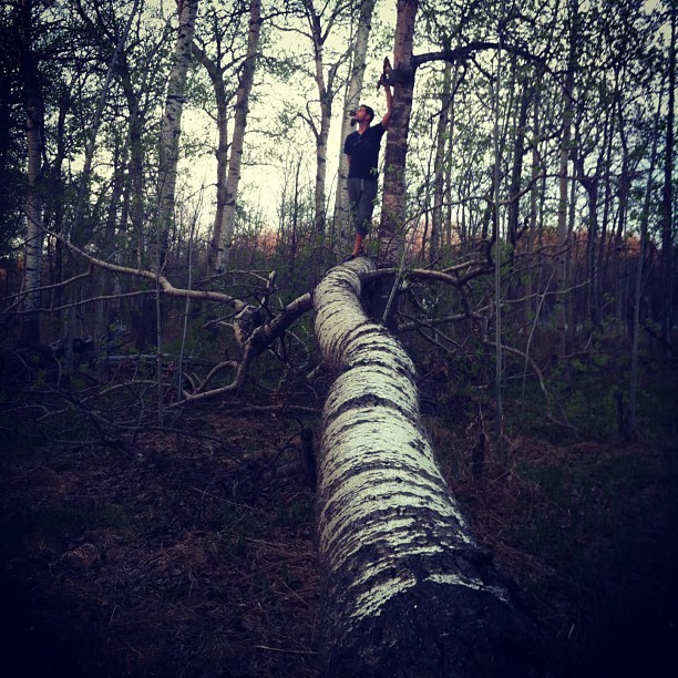 Insta-fote. Totally conquered this tree, thus I have conquered nature