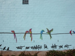 graffquotes:  Just be thankful for what you got.