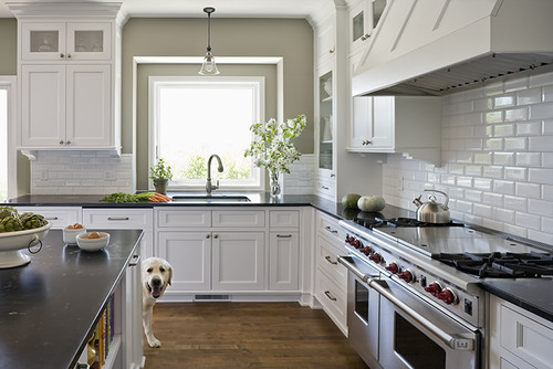 sealofaprep:  georgianadesign:  Victoria, MN, kitchen by Casa Verde Design.   CUTE DOG