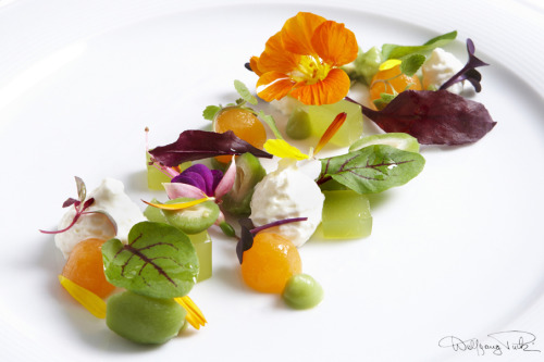 wolfgangpuck:  Japanese Baby Peach Salad, on the Oscars menu. Wolfgang Puck Catering.   Vibrant colors!