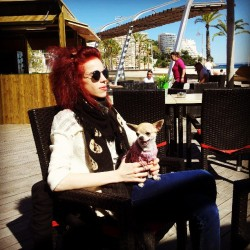 #me #sunny #sunshine #sunlight #sun #spain #mallorca #chihuahuas #chihuahua #chi #dogs #dogstagram #dogsofinstagram #doglovers #dogfashion #petstagram #pets #beach #beaches #pirates #cafe #instaweather #instapopular #instagood #instagramers #instadogs #instagramhub #instalike #instatravel #travel #warm #awesome #followme  (på/i Pirates Beach Bar)