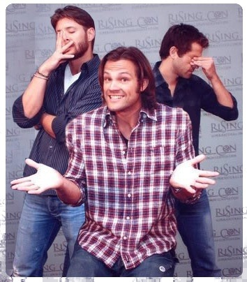 assstiel:  chaaaaaaaaaaaaaaaaaarlie:  teamponytail:  cultureofwhoiam:  Jared Padalecki everyone…  What sitcom is this from?  So Get This    i think i went too far on this one