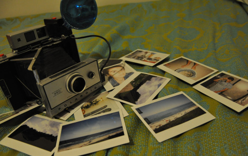 thethirdretinaphotography:  Polaroid 350 Land Camera  2010