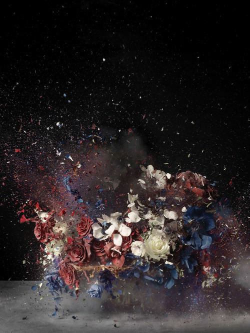 cavetocanvas:  Ori Gersht, Blow Up: Untitled 4, 2007