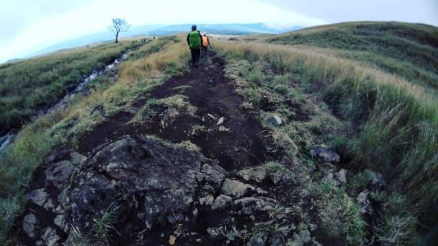 Kembali turun ke desa #rinjani #mountain #pendaki  https://www.instagram.com/p/CVeuGDfP20M/?utm_medium=tumblr #rinjani#mountain#pendaki