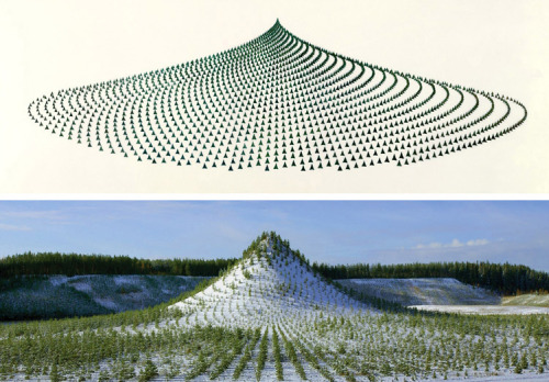n-architektur:  A huge manmade mountain measuring 420 meters long, 270 meters wide, 38 meters high and elliptical in shape was planted with eleven thousand trees by eleven thousand people from all over the world at the Pinziö gravel pits near Ylöjärvi, Finland, as part of a massive earthwork and land reclamation project by environmental artist Agnes Denes