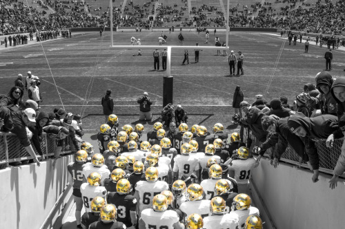 we-are-nd:  Blue Gold Game 2013 - University of Notre Dame (by gbozik photography)