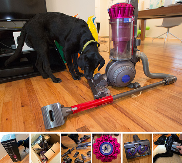 """DYSON DC41 ANIMAL COMPLETE + GROOM TOOL"" NOTCOT Product review of Dyson's new vacuum cleaner targeted at pet owners ."