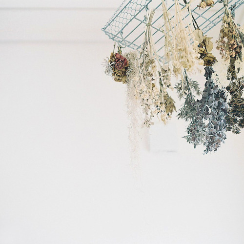 valscrapbook:  untitled by shabon* on Flickr.