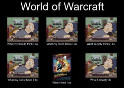 World of Warcraft. The perception.