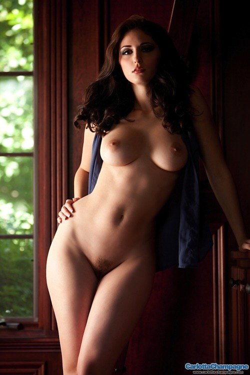 thecurvygirls1:  The Ever Steamy Carlotta Champagne!