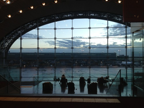 Loved the airport in Paris.