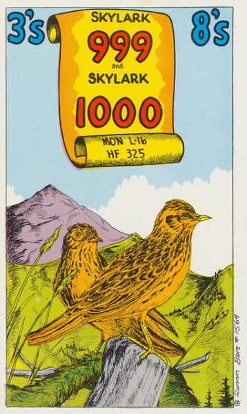Skylark 999 & Skylark 1000 Runnin' Bare #1564 QSL cards have been used by Citizen Band (CB) radio folks for many years to indicate that they have talked together on a certain radio frequency, date and time.