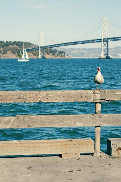 San Francisco, 2011.