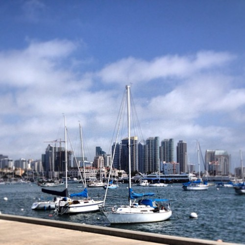 Looked back and just noticed this view during my jog on my Seaport Village route today. #SD #sandiego #finestcity #blessed #finallysummer #seaportvillage #downtownsd (at Port of San Diego)