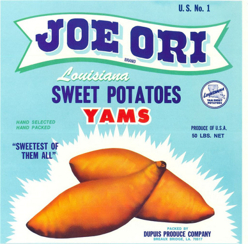 Yams. Just because. vintascope:  Joe Ori Sweet Potatoes on Flickr.