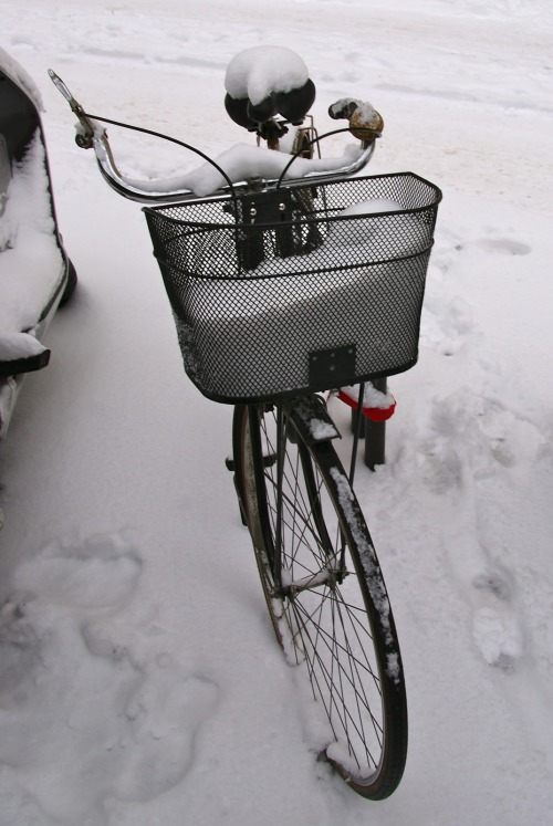 Bicycle with a basket full of snow - Céline Charmey