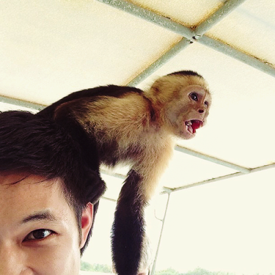 glee-ahs-nyc:  @iharryshum - Happy Holidays from me and my monkey.