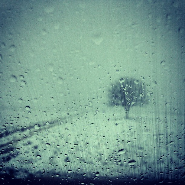 #winter #snow #rain #drops #turopolje #cro #croatia #crostagram #hr #hrvatska #tree