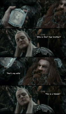gandalf fili kili oin gloin bofur dori ori legolas Thorin the desolation of smaug tauriel mirkwood how to tell ttanner2448 elf maid