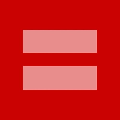 sluttyguitarist:  Because equality is a human right!(Two pink lines on a red background as the expression for the equal treatment of heterosexual and homosexual partnerships.)
