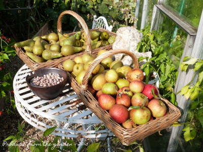 september-round-up-in-the-kitchen-garden