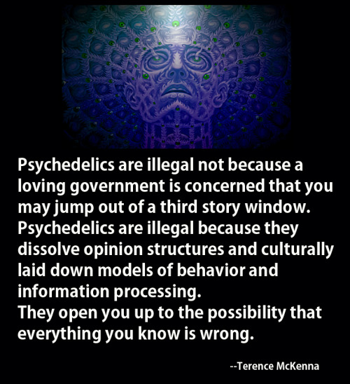 It might be strange for me to post Terence McKenna stuff since I am actually not into psychedelics. However, I fully support the legalization of drugs. I find it ridiculous that guns, alcohol and cigarettes are perfectly legal, but things like weed, LSD and DMT are illegal. You can't have it both ways, people. What a schizophrenic country we live in here in the US.